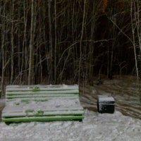 Пришла зима... :: Наталья Жукова