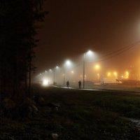 туман5 :: Игорь Свет