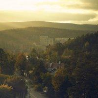 Город в лесу :: андрей
