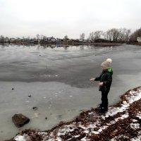 Пруд замерз. :: Елизавета Успенская