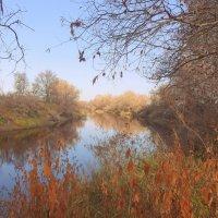 Я ходила трогать осень за оранжевые ветки... :: Елена Ярова