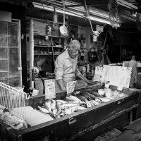 Продавец рыбы :: Владимир Сарычев