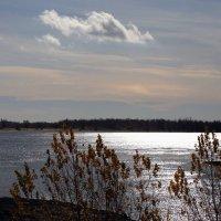 Осенняя река :: Alexander Varykhanov