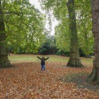 London. St.James park :: Павел L