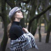 В старом парке осенью :: Михаил Онипенко