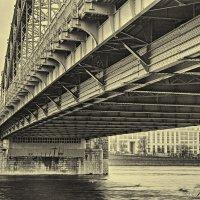 Мост Императора Петра Великого :: Василий Голод