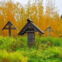 Старое кладбище :: Марина Богданова
