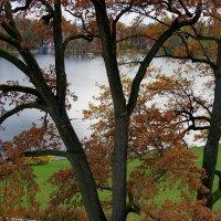 Осень в Екатериновском парке :: Светлана