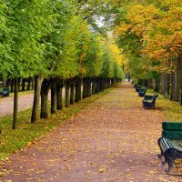 Тихая осень... :: Витас Бенета