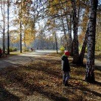 Прекрасный октябрьский день. :: Елизавета Успенская