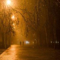 Туман1 :: Павел
