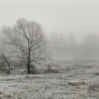 Утренний туман :: Николай Варламов