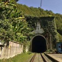 Тоннель станции Псырцха :: Светлана Винокурова