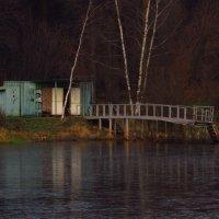 Водоплавающая :: Андрей Лукьянов