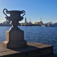 на Кронштадской набережной :: Елена