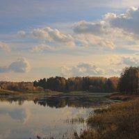 Природа вся полна последней теплоты; Прозрачных облаков спокойное движенье, :: ALISA LISA