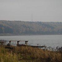 Туманное утро :: Николай Варламов