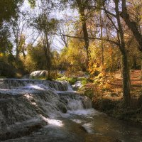 Осень в Арагоне :: Maria