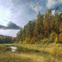 Ранняя осень :: Sergey Polovnikov