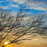 Зимний закат :: Илья Данилюк