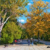Октябрь в городском парке. :: Вахтанг Хантадзе