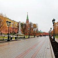 Серая Москва :: Андрей