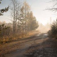 Просто осень... :: Sergey Apinis