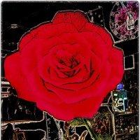 Огромная роза из бутика :: Нина Корешкова