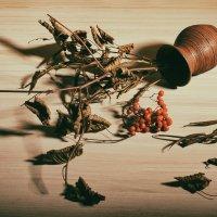 Упавшая ваза :: Милоцвета (Александра Баранова)
