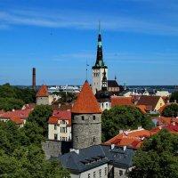 Tallinn :: Татьянка *