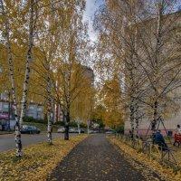 в городе осень :: gribushko грибушко Николай