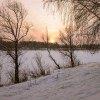 у замерзшего пруда :: cfysx