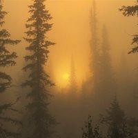 Восходит солнце в утренней мгле :: Сергей Чиняев
