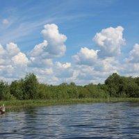 Течёт река. :: Галина .
