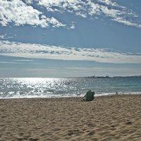Теперь  местному можно  посидеть у  моря в  одиночестве. :: Виталий Селиванов