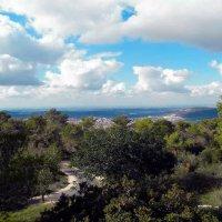 По пути в Изриельскую долину :: Aleks Ben Israel