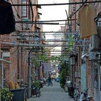 французский квартал в Шанхае :: Андрей + Ирина Степановы