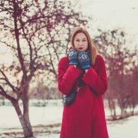 Красная осень :: Кристина Пролыгина