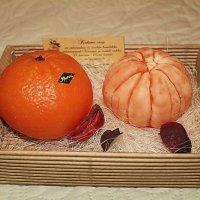 Если пахнет мандаринами, значит скоро Новый год! :: Marina Pavlova
