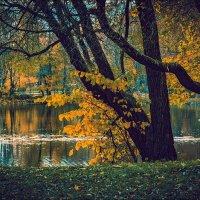 ЦПКиО в октябре :: Валентин Яруллин