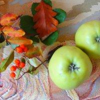 Осенние яблоки... :: Тамара (st.tamara)