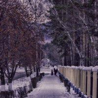 Аллея возле парка. :: Вадим Басов