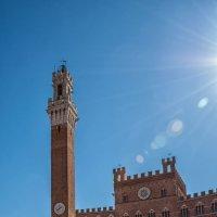 Сиена. Piazza del Campo. Дворец Коммуны (Palazzo Pubblico) :: Надежда Лаптева
