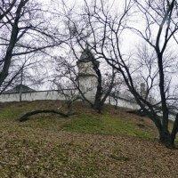 Андроников монастырь :: Марина Буренкова