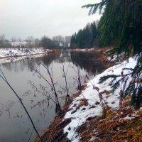 поздняя осень на Ухтоме :: vg154