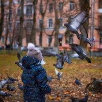 что за птички :: Александра Михайлова