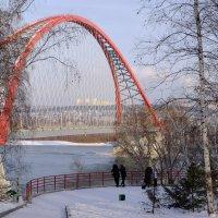 Бугринский мост :: Dmitry i Mary S