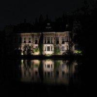 Таинственный дворец :: Grey Bishop