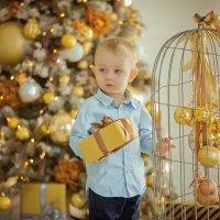 Новогодняя сказка Захарика :: Кристина Беляева