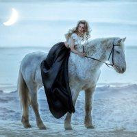 Снежная пустыня :: Anna Albert